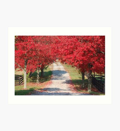 Red Country Road Art Print