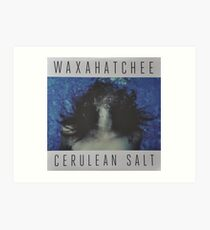 Waxahatchee - cerulan salt vinyl LP sleeve art fan art Art Print