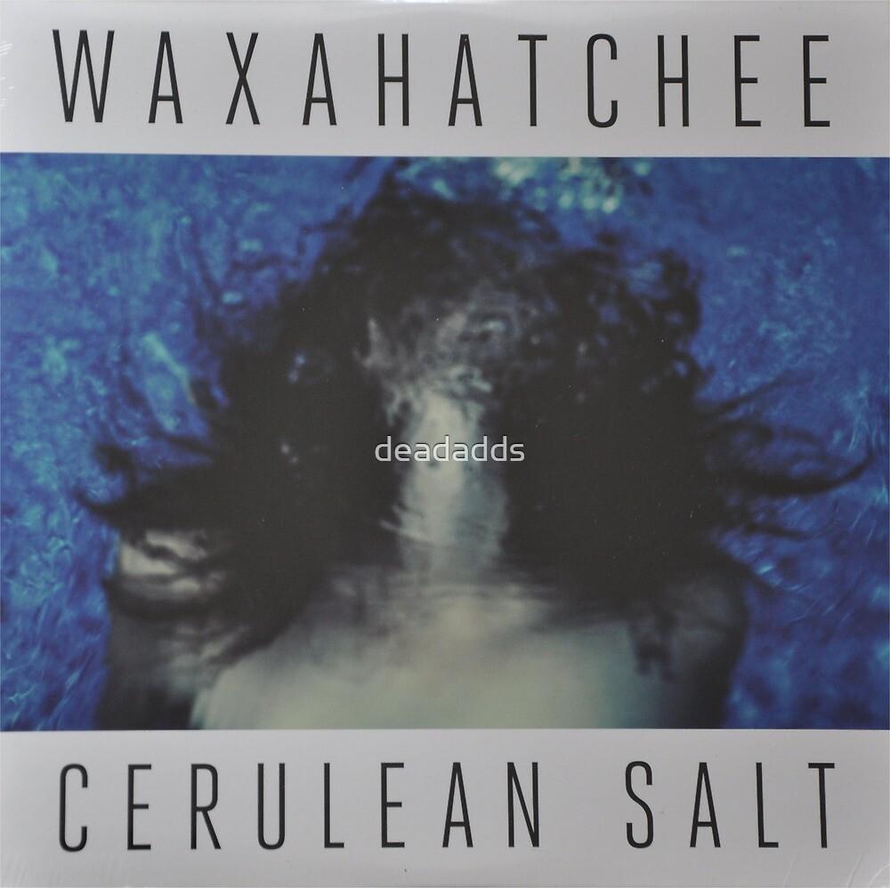 Waxahatchee - cerulan salt vinyl LP sleeve art fan art by deadadds