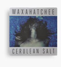 Waxahatchee - cerulan salt vinyl LP sleeve art fan art Canvas Print