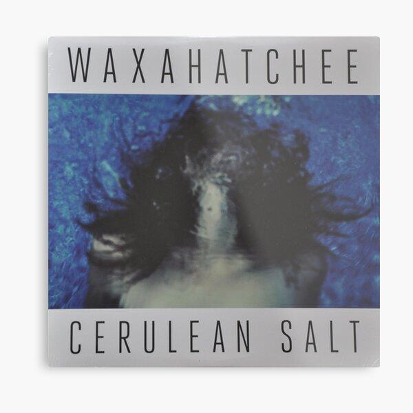 Waxahatchee - cerulan salt vinyl LP sleeve art fan art Metal Print