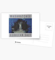 Waxahatchee - cerulan salt vinyl LP sleeve art fan art Postcards