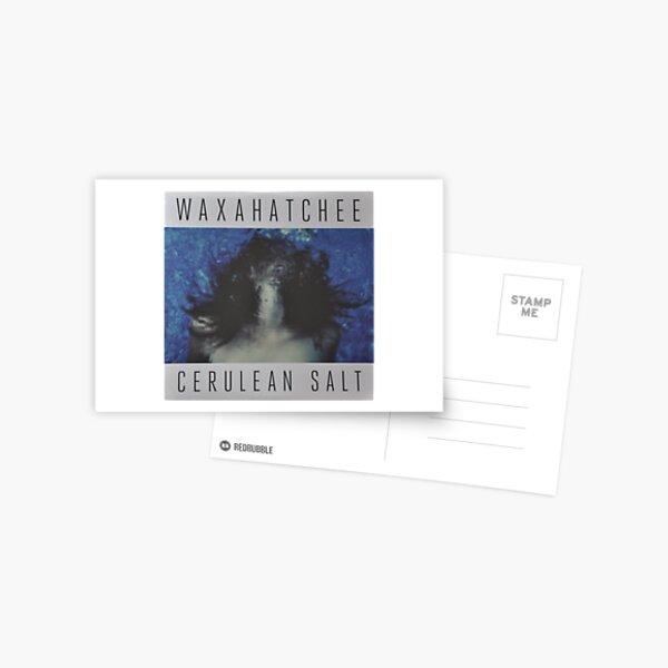 Waxahatchee - cerulan salt vinyl LP sleeve art fan art Postcard