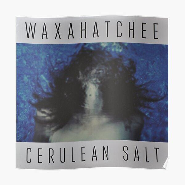 Waxahatchee - cerulan salt vinyl LP sleeve art fan art Poster