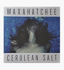 Waxahatchee - cerulan salt vinyl LP sleeve art fan art Photographic Print