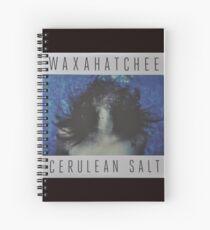 Waxahatchee - cerulan salt vinyl LP sleeve art fan art Spiral Notebook