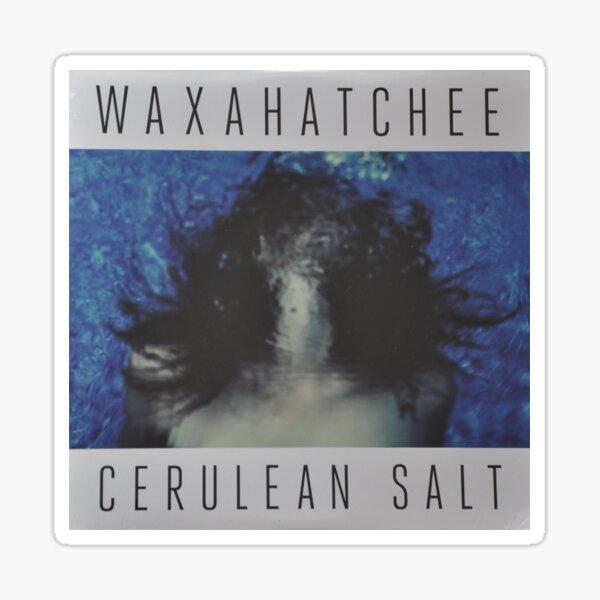 Waxahatchee - cerulan salt vinyl LP sleeve art fan art Glossy Sticker
