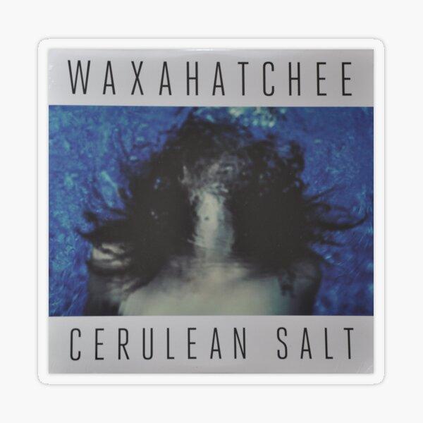 Waxahatchee - cerulan salt vinyl LP sleeve art fan art Transparent Sticker