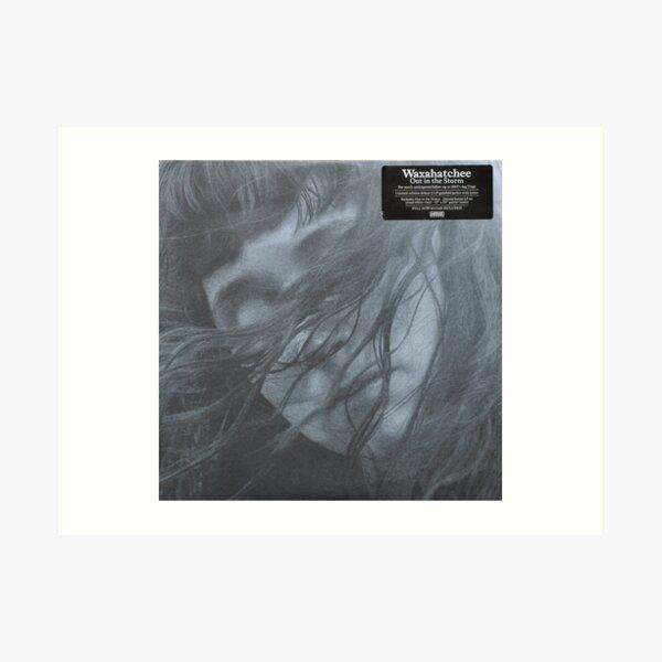 Waxahatchee - out in the storm vinyl LP sleeve art fan art Art Print