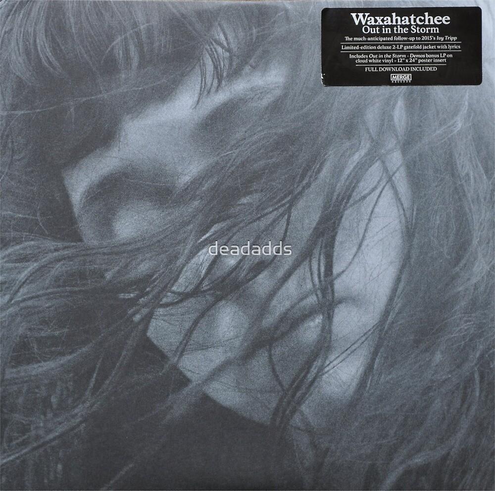 Waxahatchee - out in the storm vinyl LP sleeve art fan art by deadadds