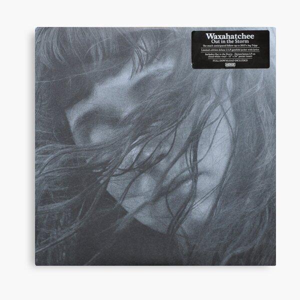 Waxahatchee - out in the storm vinyl LP sleeve art fan art Canvas Print