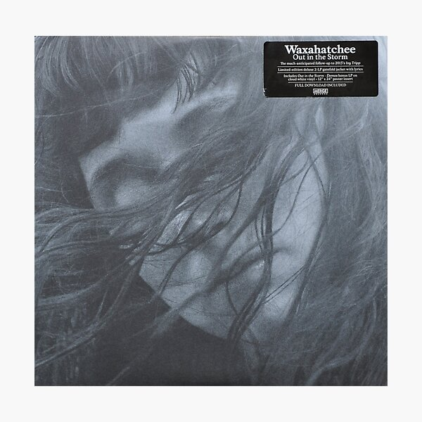 Waxahatchee - out in the storm vinyl LP sleeve art fan art Photographic Print