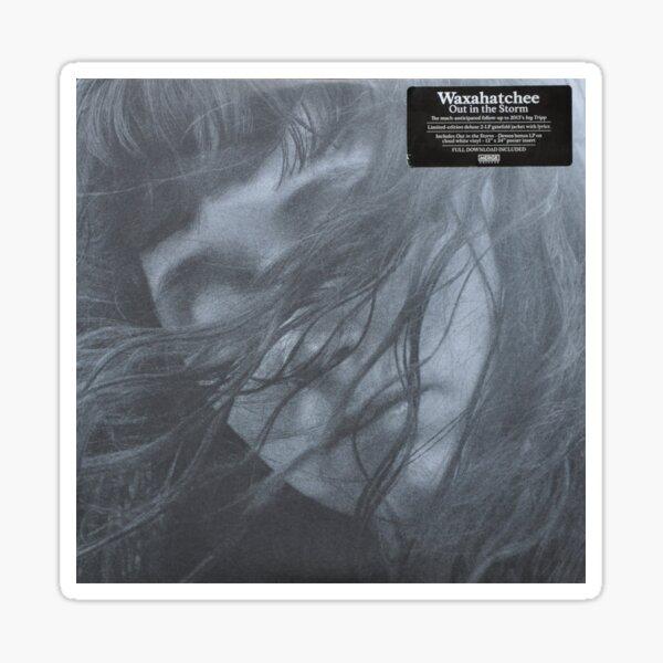 Waxahatchee - out in the storm vinyl LP sleeve art fan art Glossy Sticker