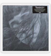 Waxahatchee - out in the storm vinyl LP sleeve art fan art Transparent Sticker