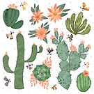 Succulents in White by Lindsey Bell