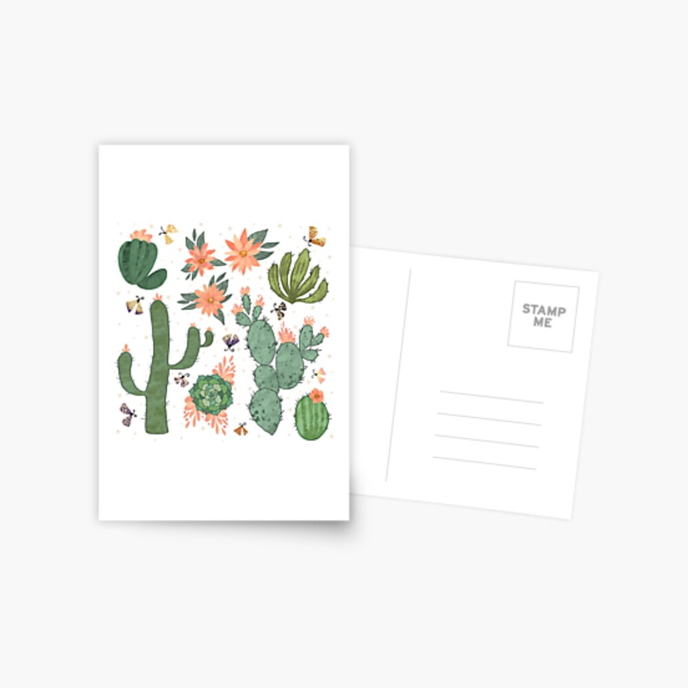 Succulents in White Postcard