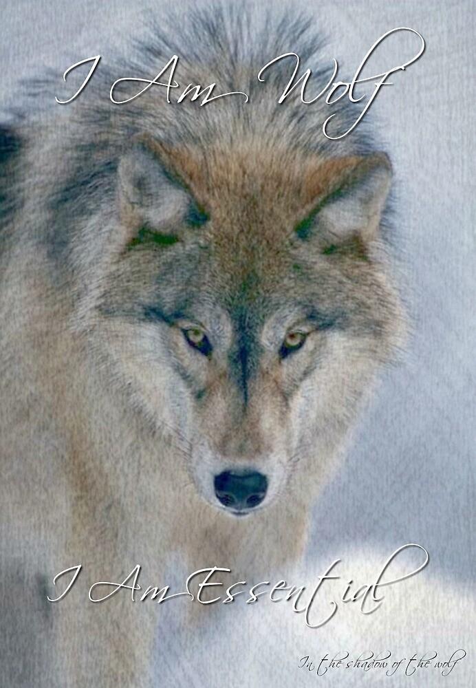Wolf by WolfShadow27