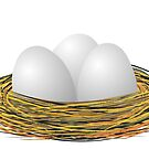 Eggs in the nest by siloto