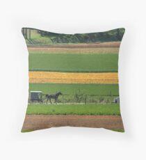 Amish Farmland Throw Pillow