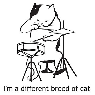 A different breed of cat (drum cat) by MUZA9