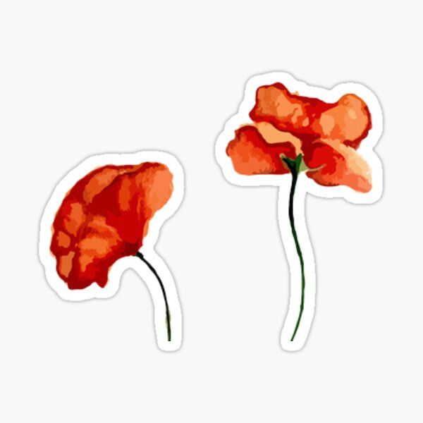 blood orange poppies Sticker