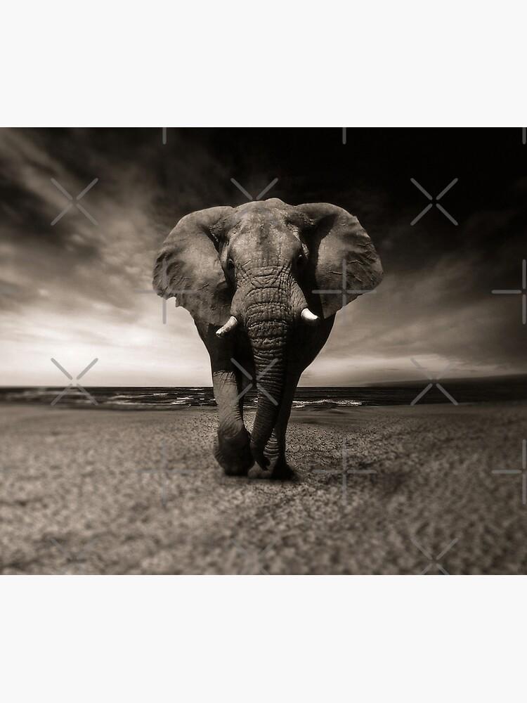 Elephant Black and White Photo-realistic Bull Elephant Print  by thespottydogg