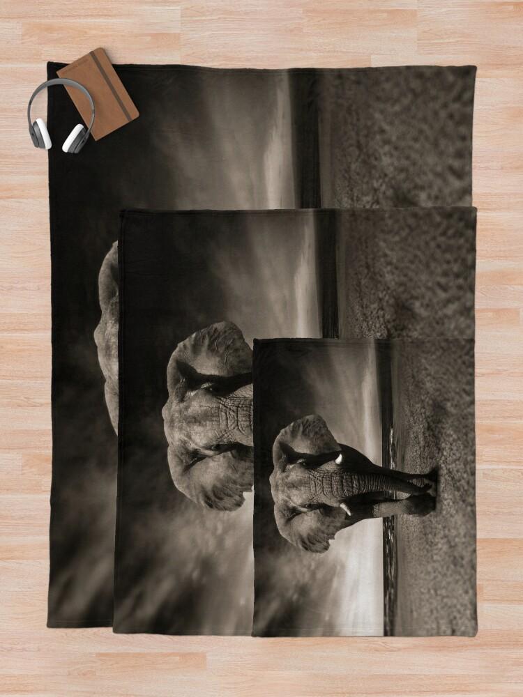 Alternate view of Elephant Black and White Photo-realistic Bull Elephant Print  Throw Blanket