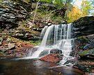 B. Reynolds Falls Under Turning Leaves by Gene Walls