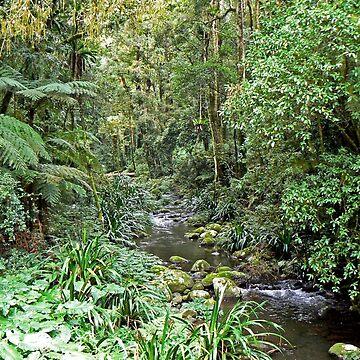 Brindle Creek by grmahyde