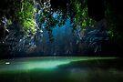 Lagoon by Nicklas Gustafsson