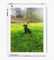 puppy iPad Case/Skin
