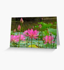 On Lotus Pond Greeting Card