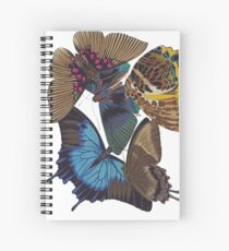 FF - Buttefly-1 Spiral Notebook