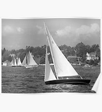 Sailboats Heading Out. Poster