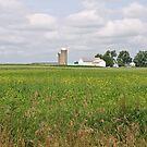 Ohio Farm by Karl R. Martin