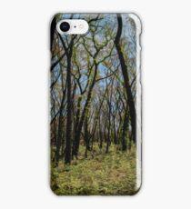 Bushfire regrowth iPhone Case/Skin