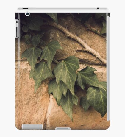 Ivy iPad Case/Skin