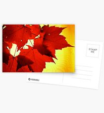 RED NOVEMBER Postcards