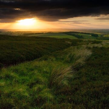 Landscape of the Scottish Lowlands south of Edinburgh Scotland by emergentdesigns