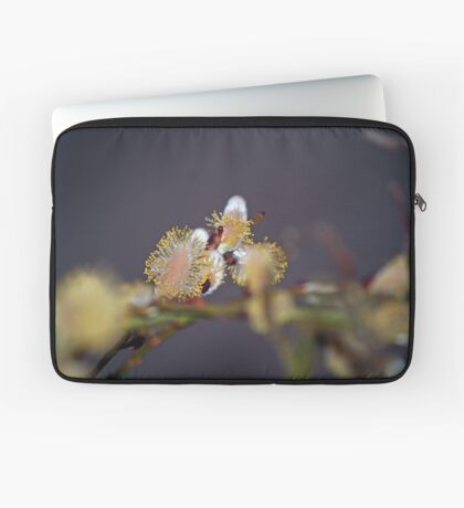 Purrhaps Spring is the cat's meow Laptop Sleeve