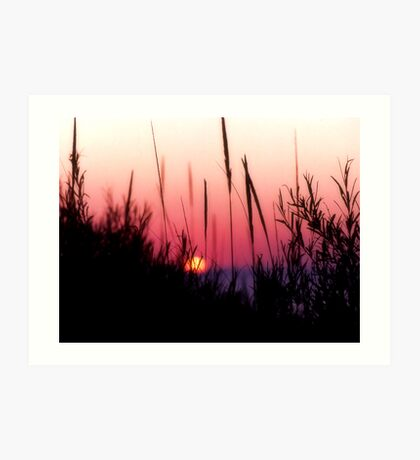 Sunset in Beach Grass II Art Print