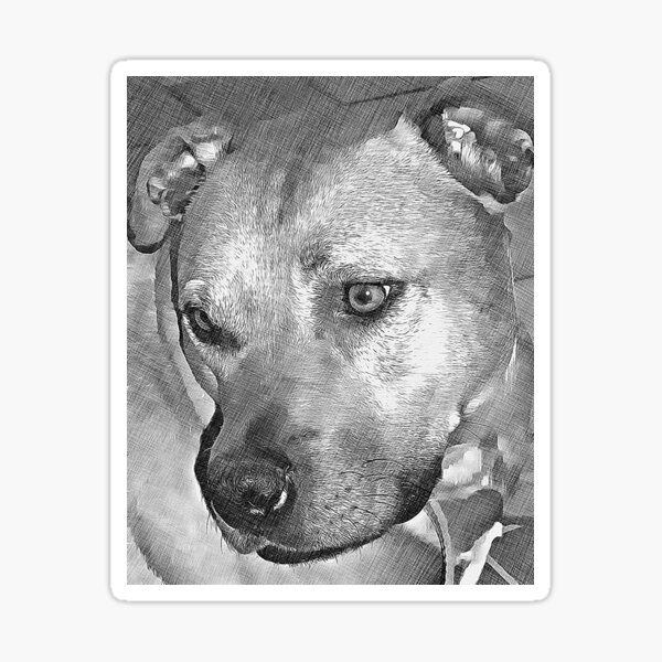 Lovely dog Sticker