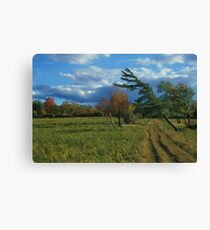 Finger Lakes National Forest Canvas Print