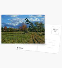 Finger Lakes National Forest Postcards