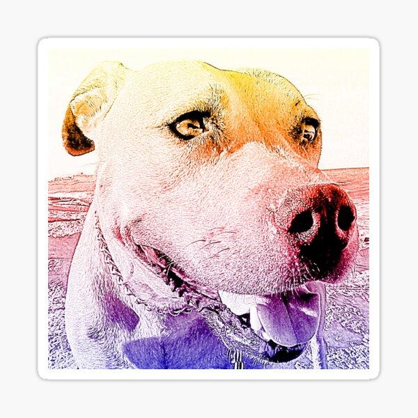 Rudy Sticker