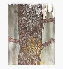 Tree Pen & Ink Drawing Photographic Print