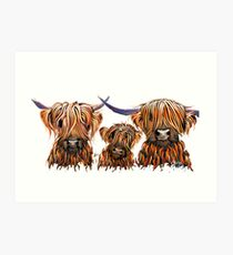 Scottish Highland Cows PRiNT 'The Tangerines 2' by Shirley MacArthur Art Print