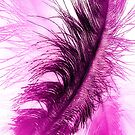 Hot Pink Plumes by SexyEyes69