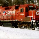 The Red Locomotive by Daniela Weil