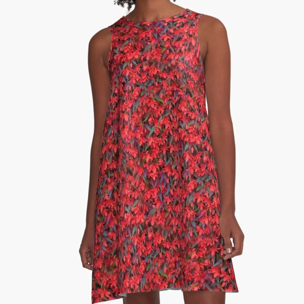 Saturated Ivy A-Line Dress